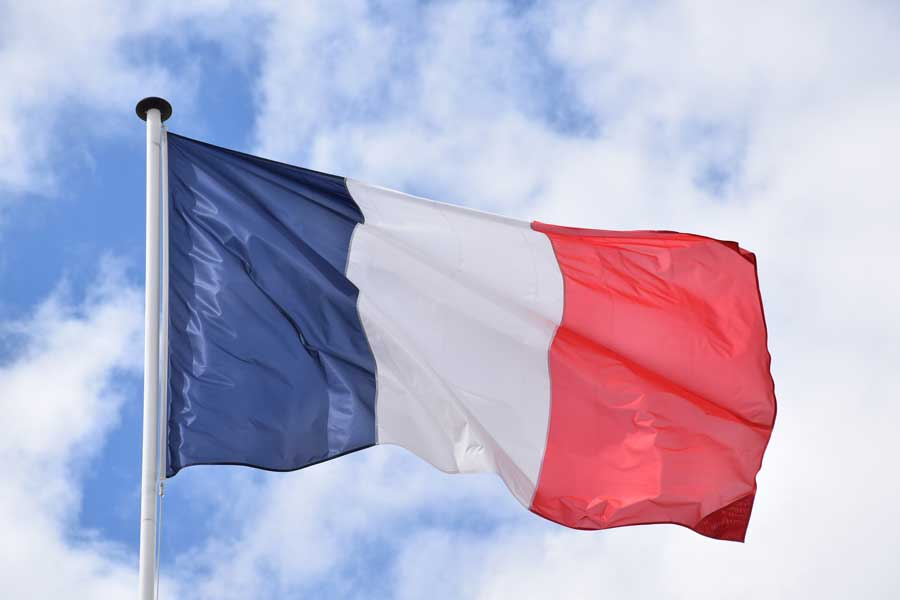 French Language Tuition